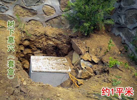 水泥套盒 墓穴