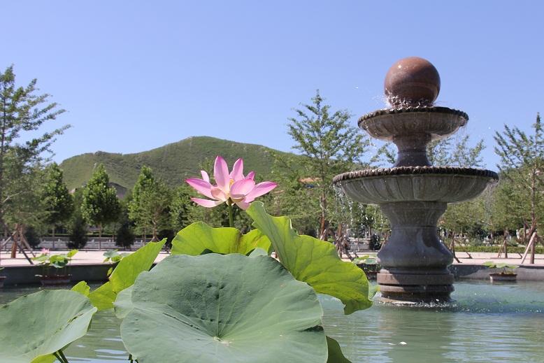 灵山宝塔景观组图