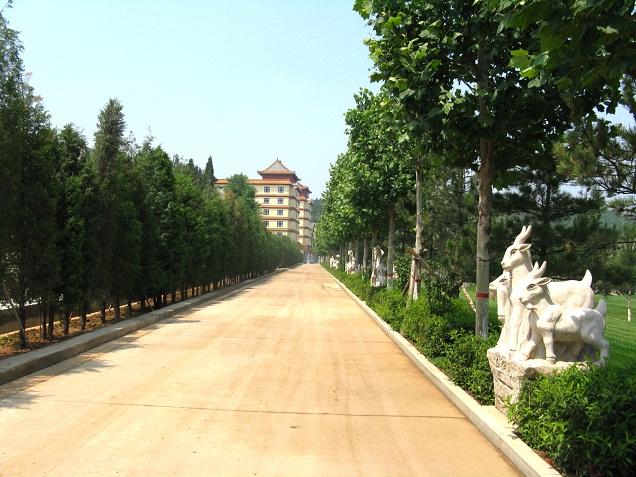 景观大道2
