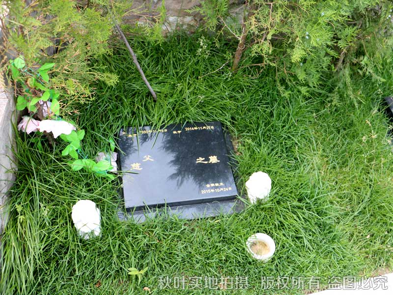 九公山公墓樹葬