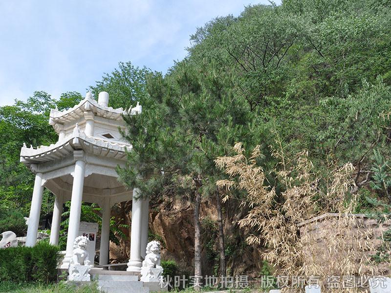 九公山长城纪念林 陵园图片 墓区景观 > 九公山长城纪念林墓区景观图