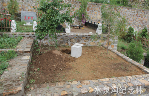 树葬图片-树下做个墓穴挖